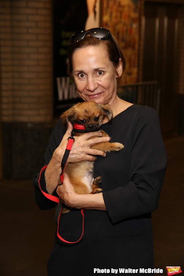 Laurie Metcalf with dogs from The Humane Society of New York