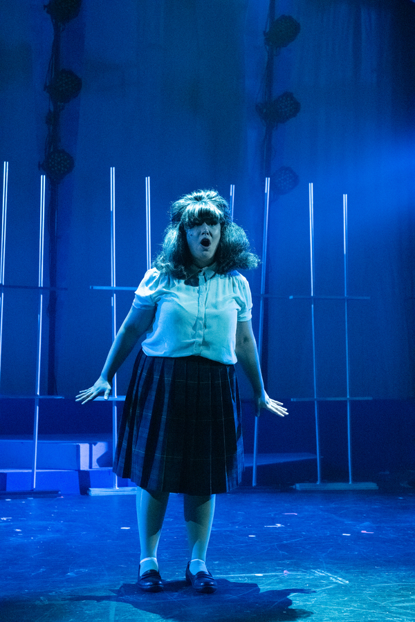 Photo Flash: Bay Area Musicals Welcomes The 60's With HAIRSPRAY!
