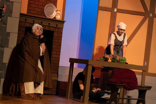 Photo Coverage: First look at Grandview Carriage Place Players' THE SLIPPER AND THE ROSE
