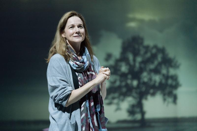 BWW Flashback: Laura Linney Takes Final Broadway Bows in MY NAME IS LUCY BARTON