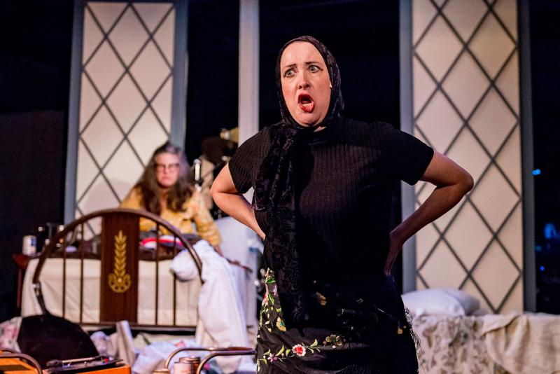 BWW Review: RICHMOND SUMMER THEATRE at Various Local Theaters