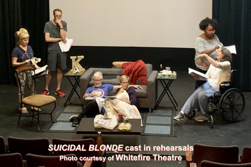 BWW Interview: Pam Trotter On Going From PURPLE to BLONDE