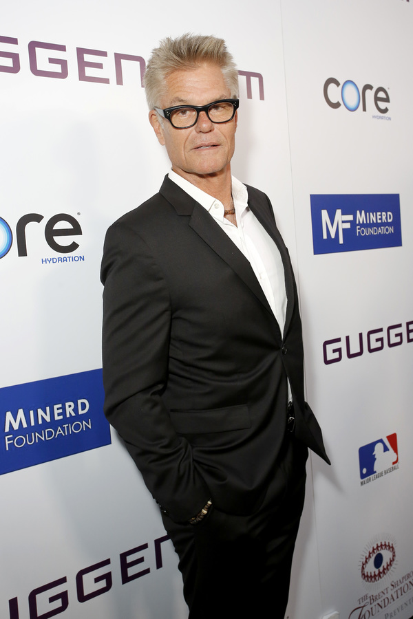 Harry Hamlin Photo