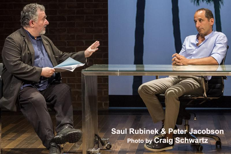 BWW Interview: A PLAY IS A POEM's Peter Jacobson - From Seedy Nightclub Owner & Wily Film Exec to Iago & Richard III