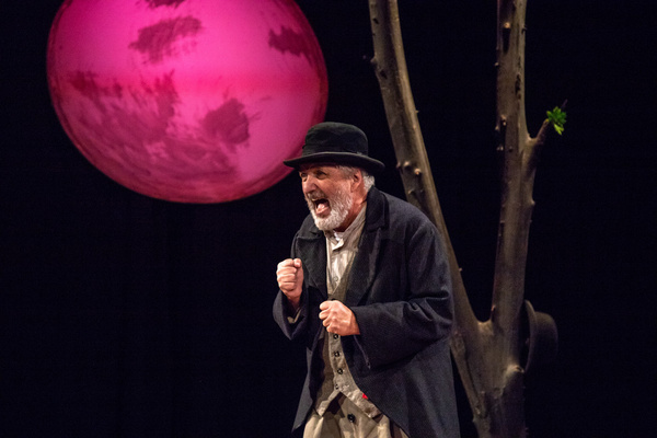 Tom Gleadow in WAITING FOR GODOT at The Wilbury Theatre Group in Providence, RI; phot Photo