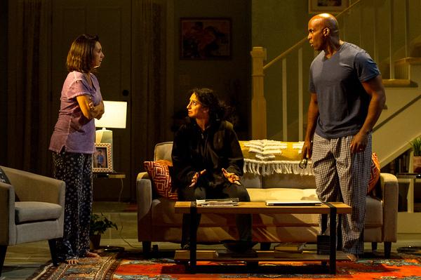 Natascia Diaz, Rasha Zamamiri, Alan H. Green Photo