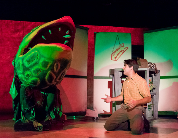 Photo Flash: First Look at TexARTS' LITTLE SHOP OF HORRORS