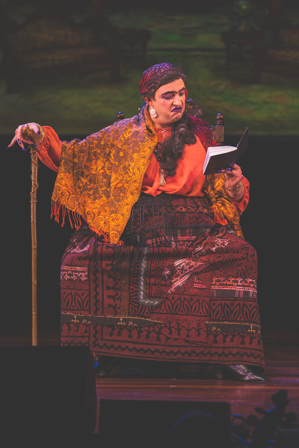 BWW Interview: Mikhl Yashinsky Gets Ready to Make Magic on Stage in NYTF's THE SORCERESS