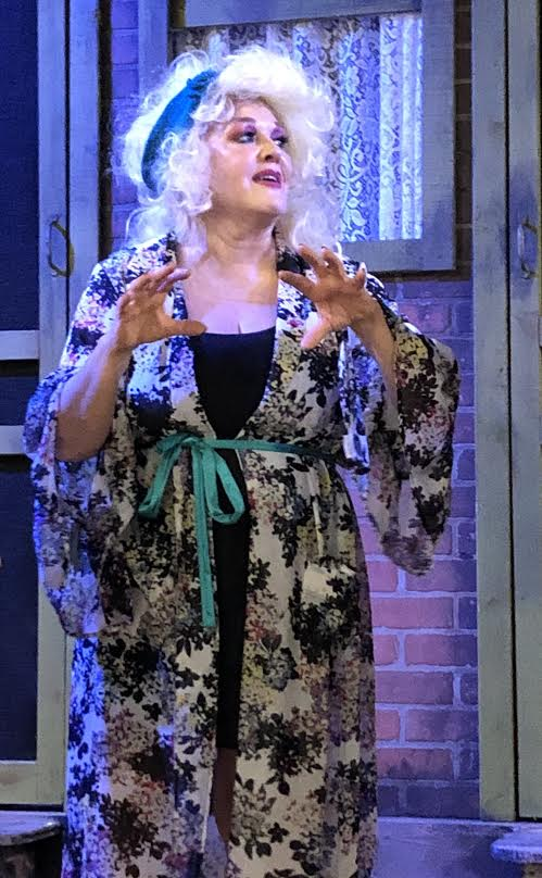 BWW Review: GEMINI at The Harrison Players