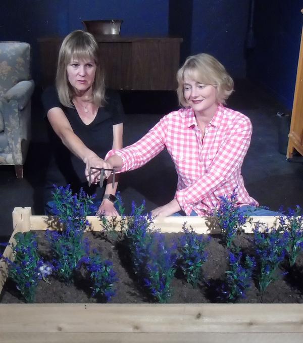Meg Wallace and Carolyn Crotty