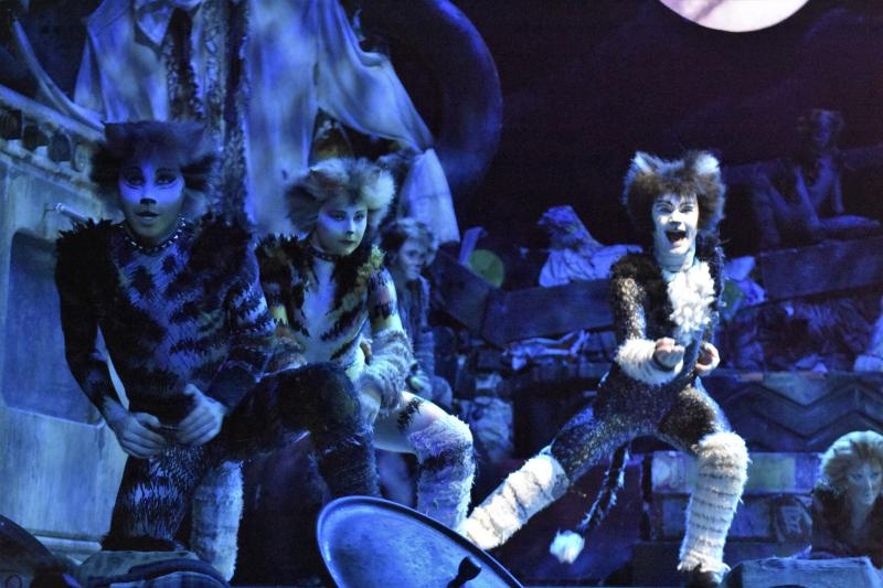 VIDEO: Take a Backstage Tour at CATS!