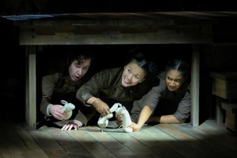 BWW Review: THE TALE OF DESPEREAUX at Berkeley Repertory Theatre is PigPen Theatre Co.'s stunning re-imagining of the award-winning book and film.