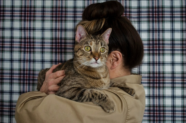 Tails of Broadway: Alice Ripley Cuddles Up with Carly and Suzy