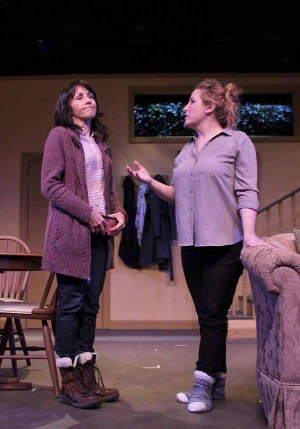 Photo Flash: First Look at ADMISSIONS at Hampton Theatre Company