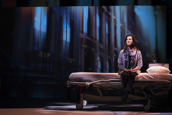 Photo Flash: First Look At MY NAME IS LUCY BARTON Starring Laura Linney