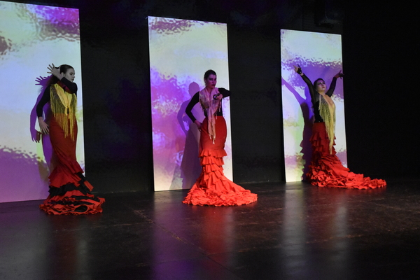 Photo Flash: 8th Annual Spring Flamenco Festival at Teatra Paraguas