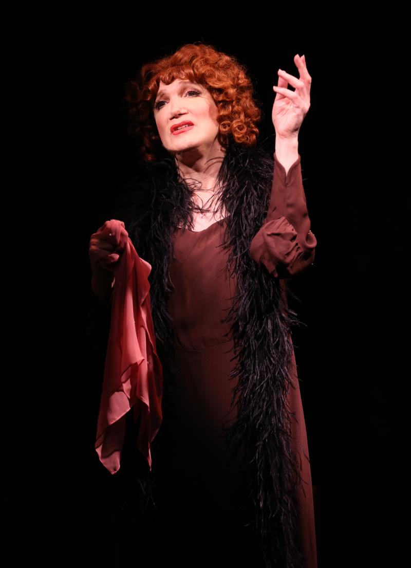 BWW Review: Charles Busch Sends Up Pre-Code 'Fallen Woman' Flicks With THE CONFESSION OF LILY DARE