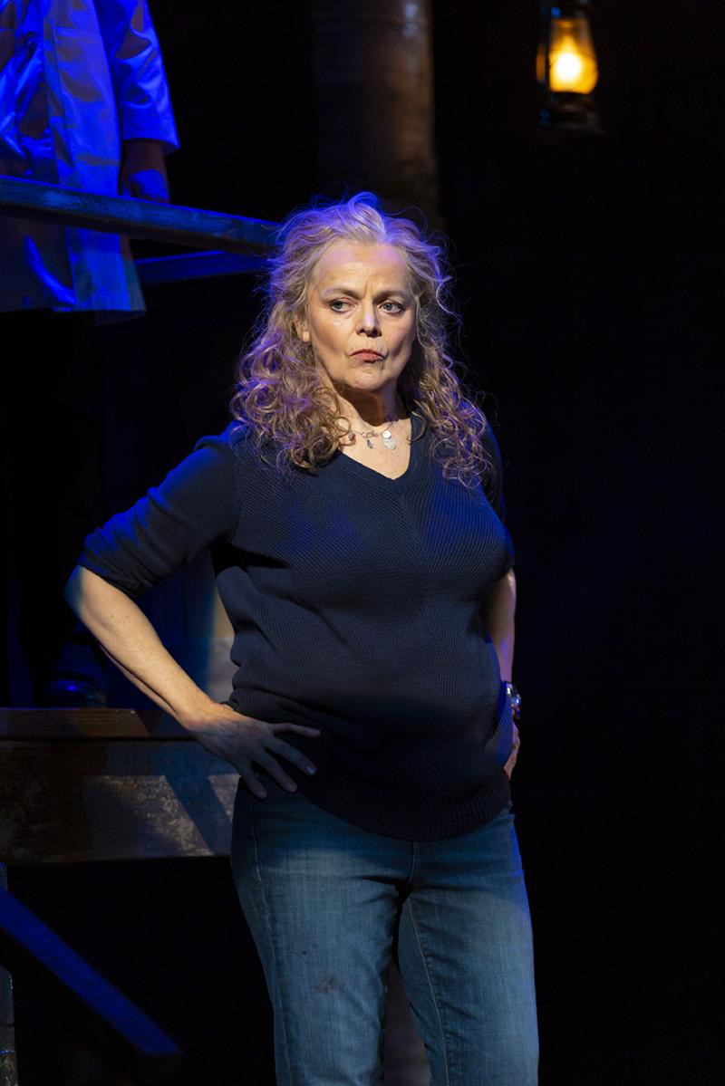BWW Review: World Premiere of MIDWIVES at George Street Playhouse-An Engrossing Drama