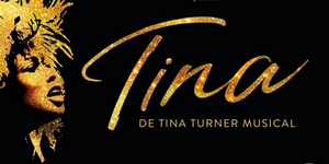 BWW Review: TINA - DE TINA TURNER MUSICAL at Beatrix Theater Utrecht: Simply the Best!⭐️⭐️ Photo