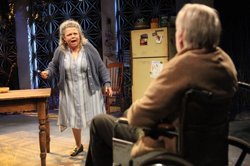 BWW Review: DON'T EAT THE MANGOS at Magic Theatre Uncovers a Puerto Rican Family's Dark Legacy in a Gorgeous Production