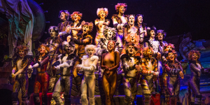 BWW Review: Broadway Across Canada's Touring Production of CATS Proves Its Enduring Appeal Photo