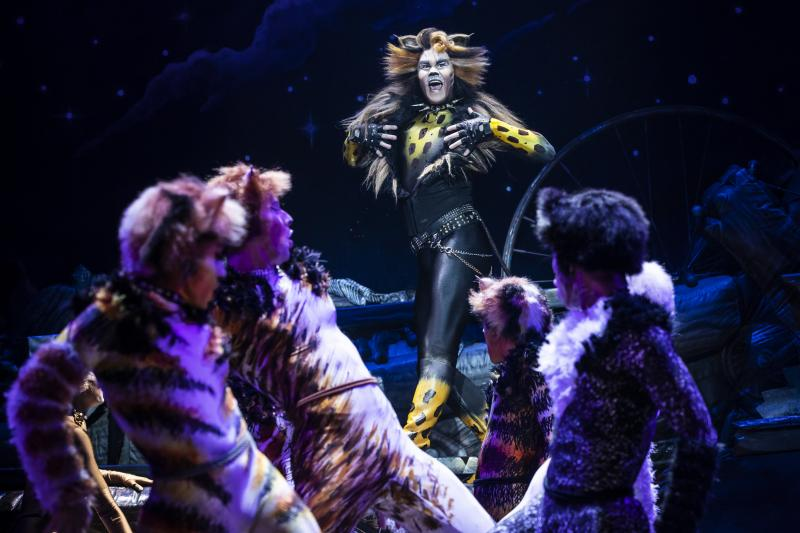 BWW Review: Broadway Across Canada's Touring Production of CATS Proves Its Enduring Appeal
