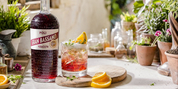 Sip Italy with Fine Choices - APERITIVO and DIGESTIVO Along with Recipes to Enjoy