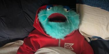 VIDEO: Team Starkid's Jaime Lyn Beatty Creates Quarantine-Inspired Puppet Film