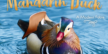 Bette Midler Will Publish a Children's Book About New York City's Mandarin Duck Photo