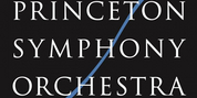 Princeton Symphony Orchestra Concerts Go Virtual for Fall Photo
