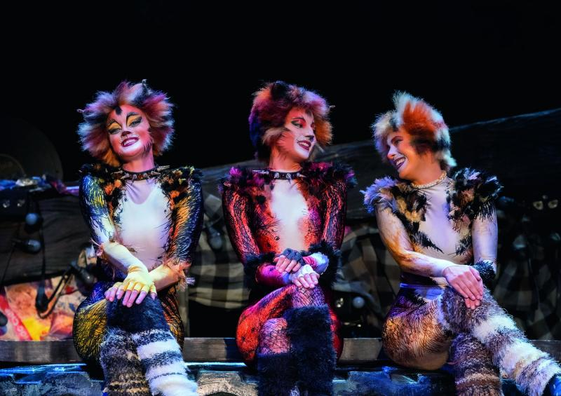 BWW Review: CATS at RONACHER THEATRE