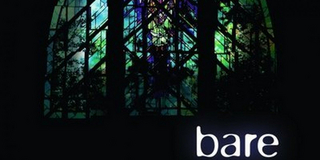 BWW Exclusive: BARE: A POP OPERA Celebrates 20 Years- Watch Now! Photo