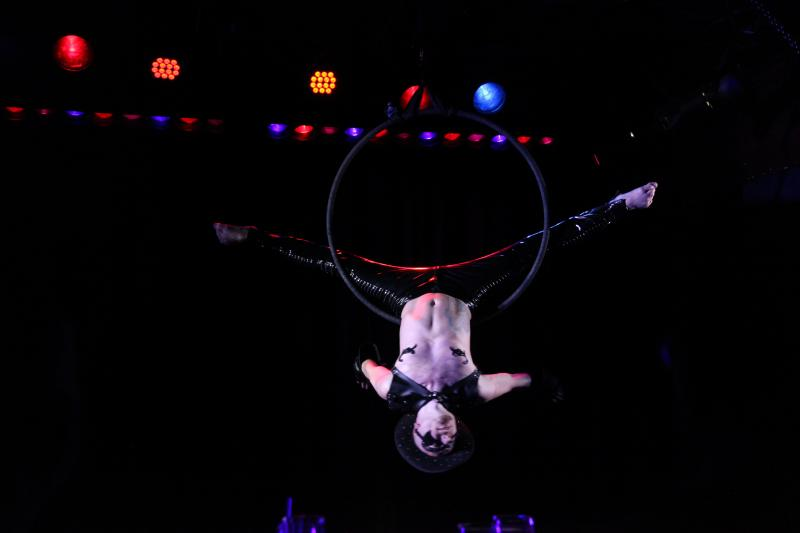 BWW Feature: And The Nominees Are... BEST BURLESQUE SHOW OR ACT
