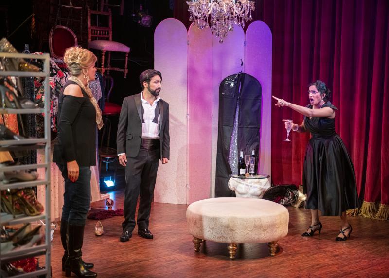 BWW Interview: Maya Kherani of THREE DECEMBERS at Opera San Jose Brings a Complex Terrance McNally Character to Life