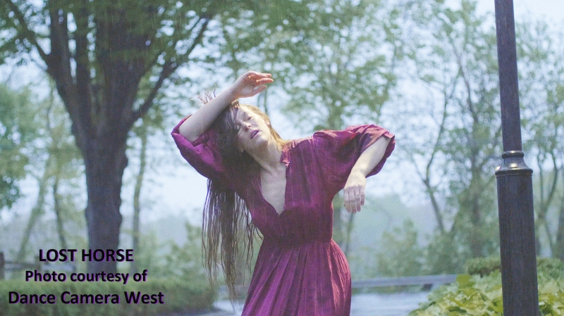 BWW Interview: Kelly Hargraves Deftly DRIVEs IN Her DANCE CAMERA WEST