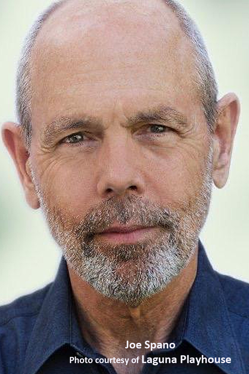 BWW Interview: Emmy-Winner Joe Spano Always Returning To His Theatrical Roots