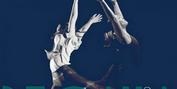 Repertory Dance Theatre Presents Annual Fundraiser and Choreographer Competition, REGALIA Photo