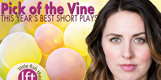 BWW Interview: Tara Donovan Elatedly Producing Her POV At Little Fish Photo