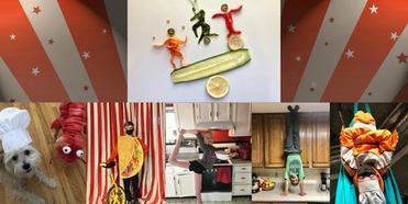 Circus Harmony to Release Interactive Cookbook Photo