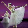 BWW Review: Take Comfort in the Classics with MILWAUKEE BALLET's TO THE POINTE Photo