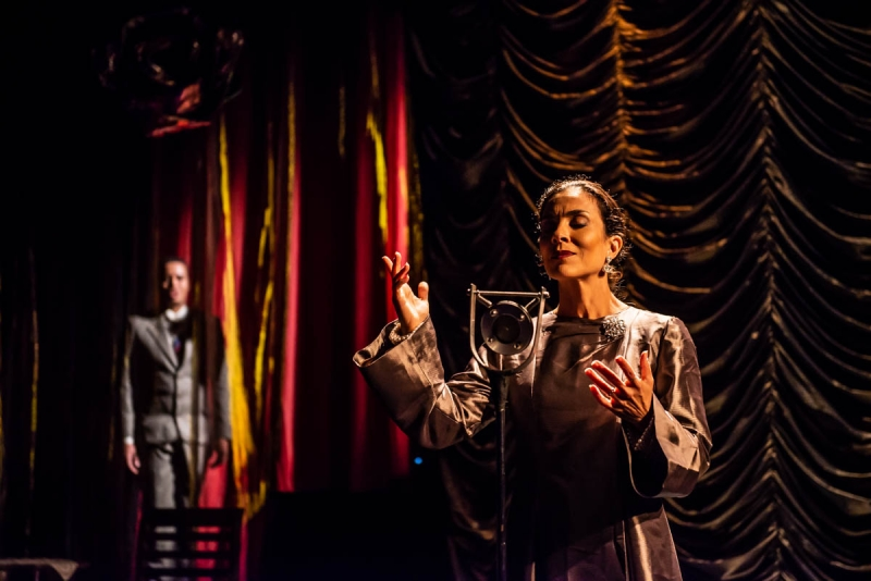 BWW Review: After a Successful Season in Rio De Janeiro, ELIZETH A DIVINA – O MUSICAL Makes a One Night Only Presentation with Online Broadcast