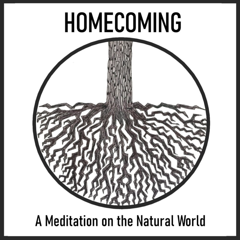 Rising Stars Series BWW Interview: Katie Turner And J'Arrian Wade talk about creating HOMECOMING: A MEDITATION ON THE NATURAL WORLD at TurnKey Theatre