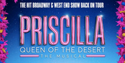 PRISCILLA Producers Respond to Casting Controversy – 'We Believe We Have Cast the Very Bes Photo