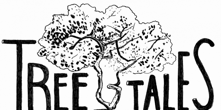 TREE TALES to be Presented by Prospect Theater Company in Riverside Park Photo