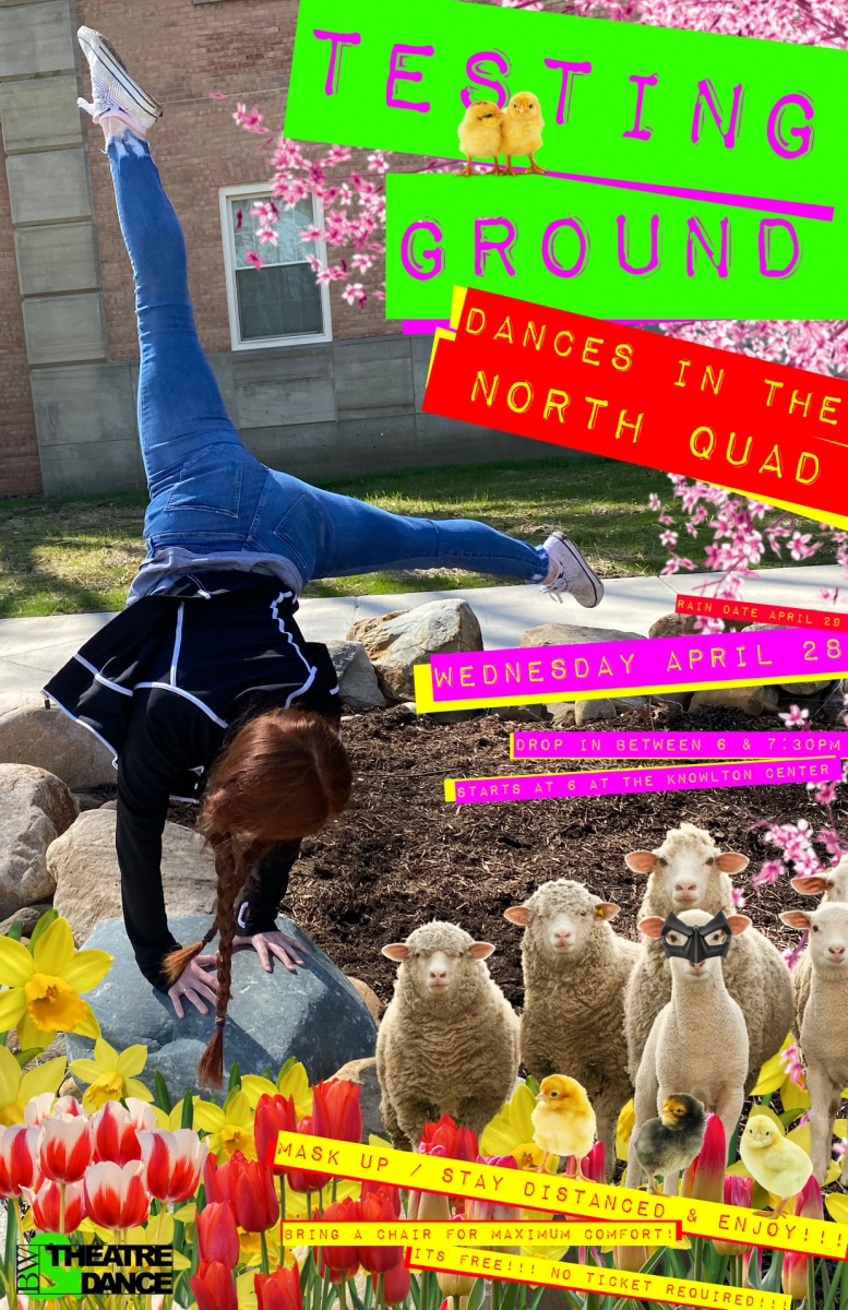 Student Blog: Shows Are Flying Under Bright Summer Skies - Frosty's World #15