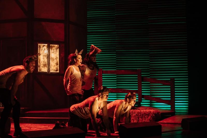 BWW Review: ANIMAL FARM by shake & stir theatre co