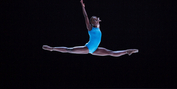 Ballerina Michaela Deprince To Chair Discussion On Inclusivity & Breaking Barriers In Ball Photo