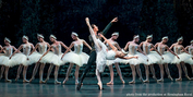 Casting Announced For SWAN LAKE at the New National Theatre, Tokyo Photo