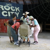 BWW Review: Nashville Children's Theatre Returns With Imaginative and Immersive CHARLOTTE' Photo