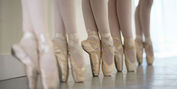 Ballet Theatre of Phoenix to Host Open House in August Photo